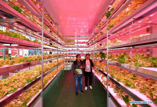 Agricultural hi-tech fair in China attracts int'l participa